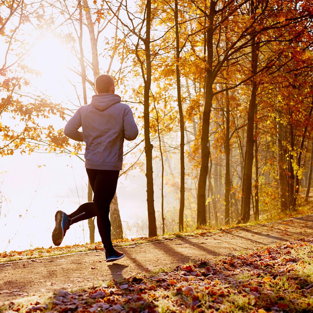 Autumn Run Image
